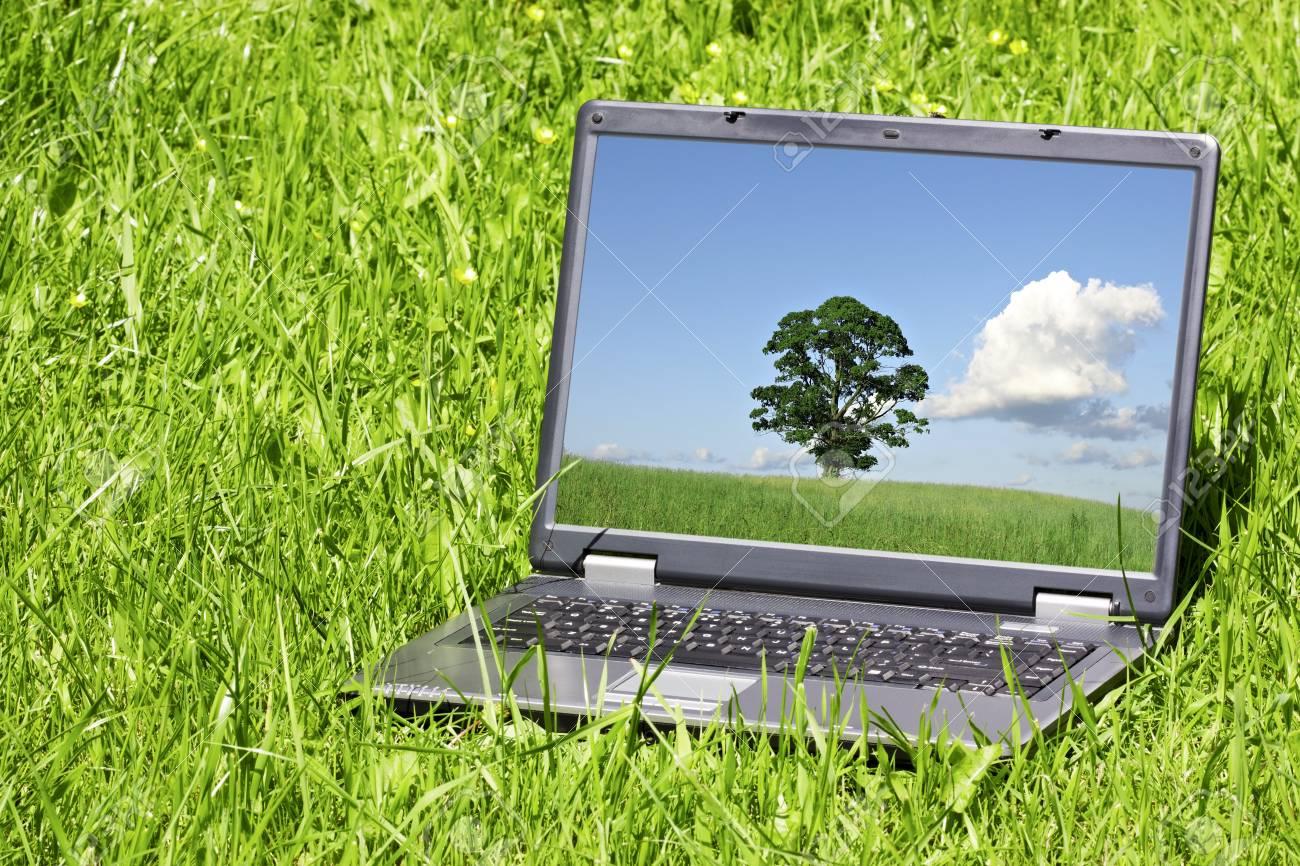14198654-ordinateur-portable-dans-une-herbe-verte-sur-une-journée-ensoleillée