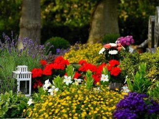 9 Liste des choses que vous pouvez faire après un service funéraire