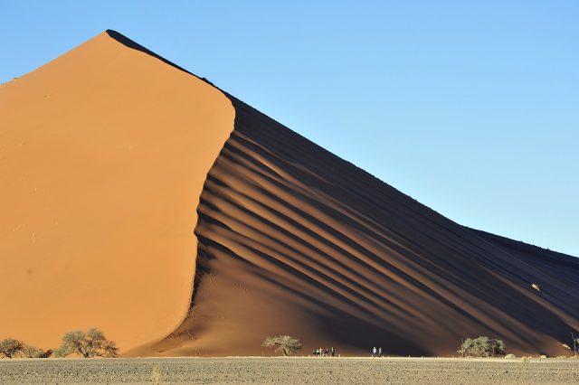 Allier tourisme durable et safari au cours d'une escapade en Namibie